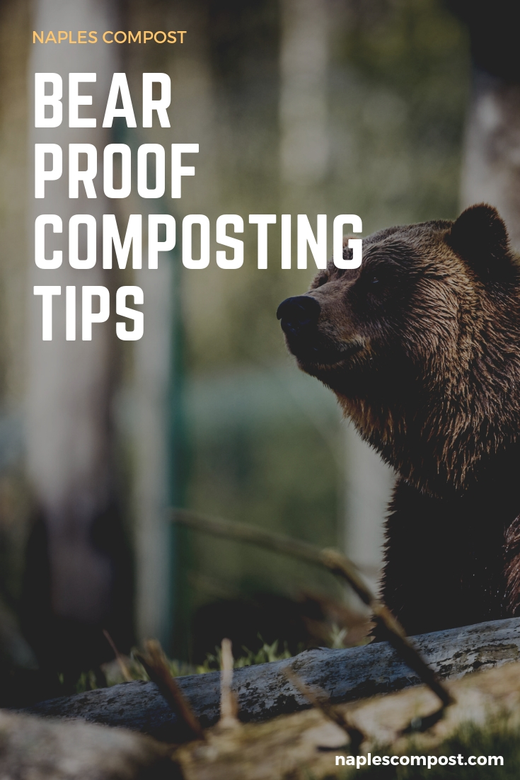 How to compost in bear country