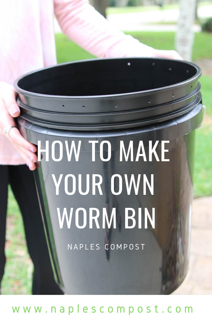 How to make your own worm bin | vermiculture