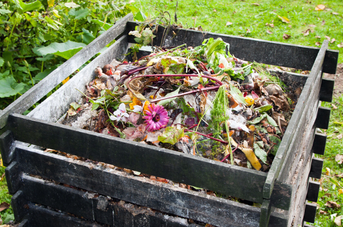 Stinky compost bin- how to keep compost from smelling bad