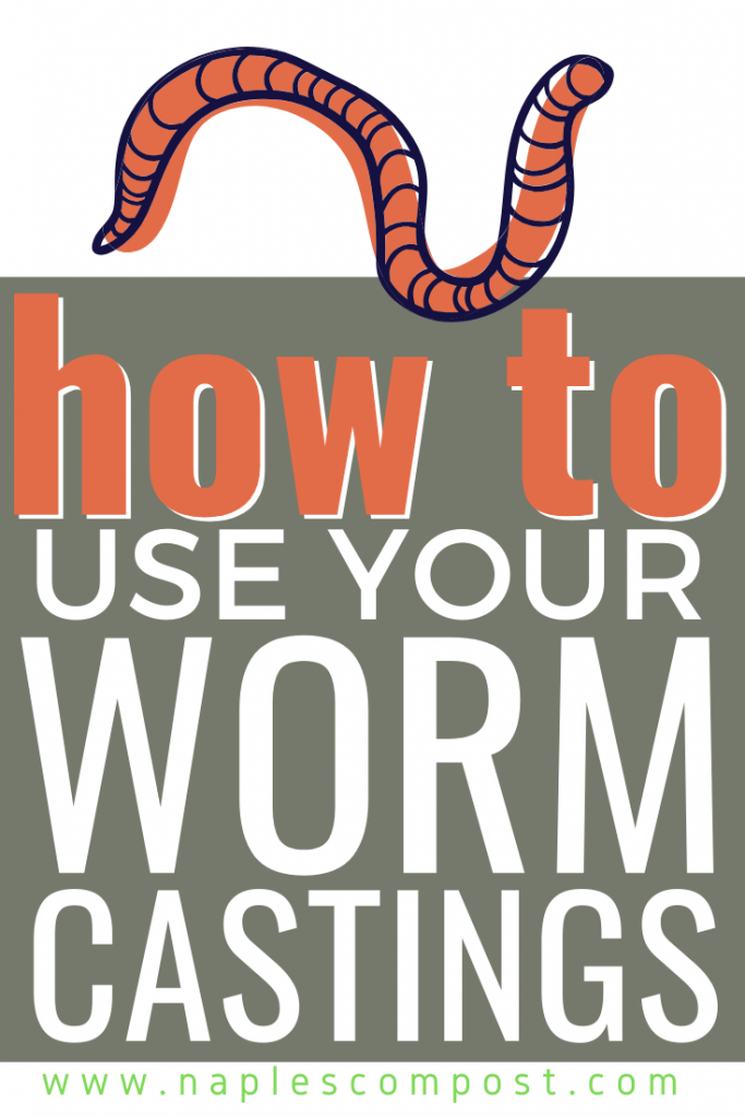 How to use your worm castings