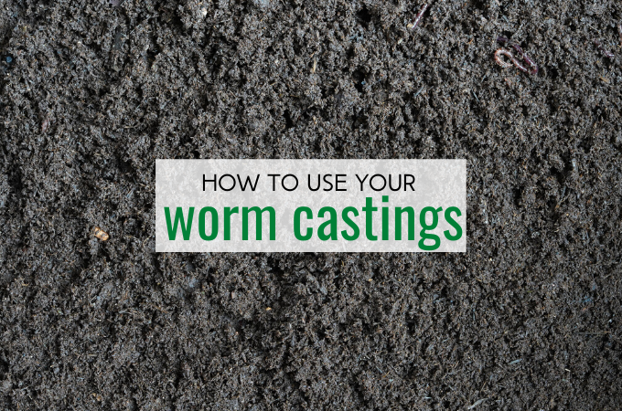 find out how to use your worm castings